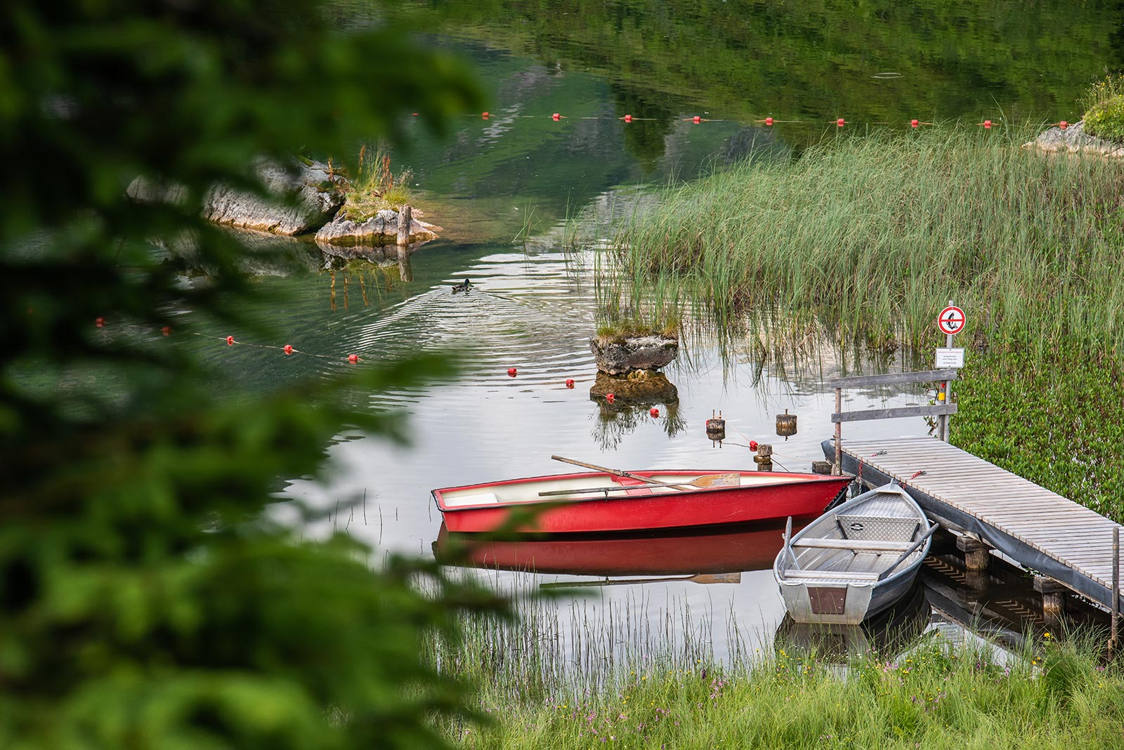 Naturjuwel Körbersee © Warth-Schröcken-Tourismus, Fotograf: Ratko Medienagentur